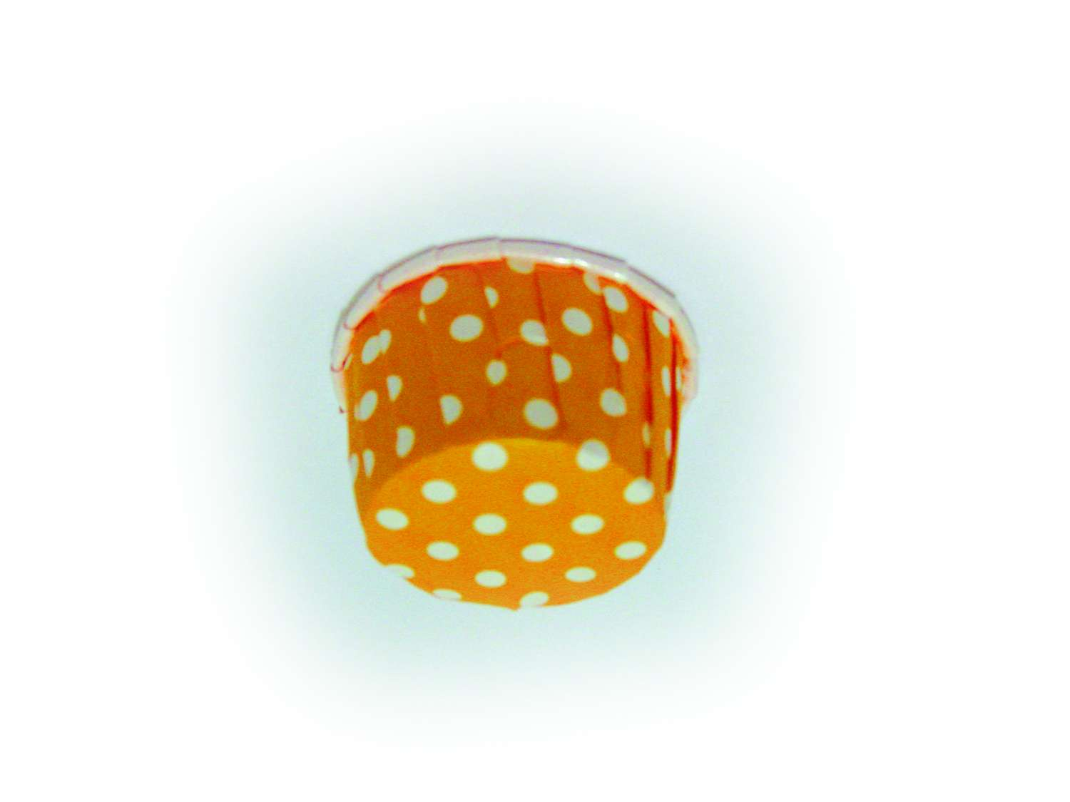 Orange Dot-PET 48, 49, 50, 51 and 55